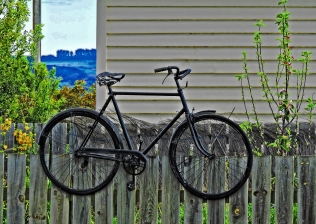 36 Middlemarch bike