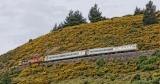 9 Rail car