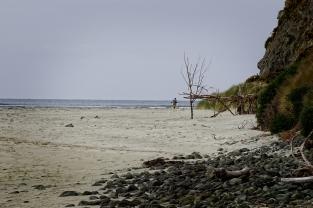 Beach hut copy