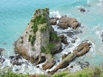 Nugget Point 4_3