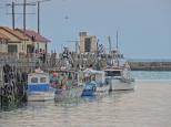 Oamaru Harbour 7 (3)