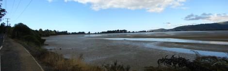waitati-estuary