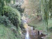Oamaru Park Autumn (2)